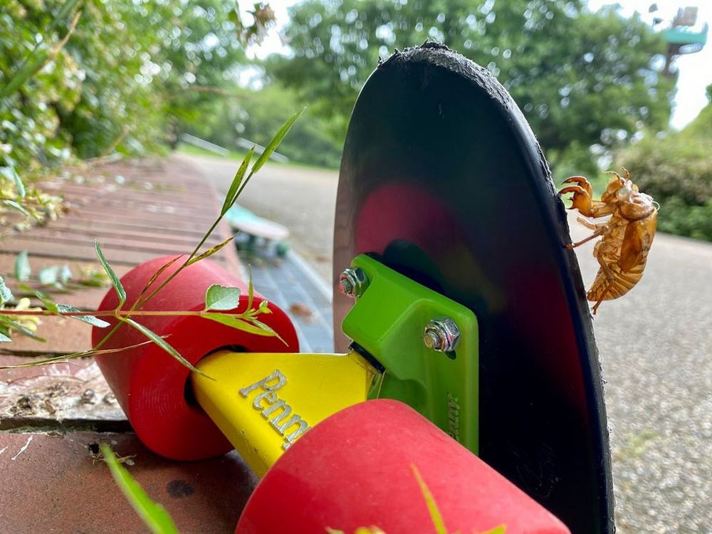 Penny Board for you