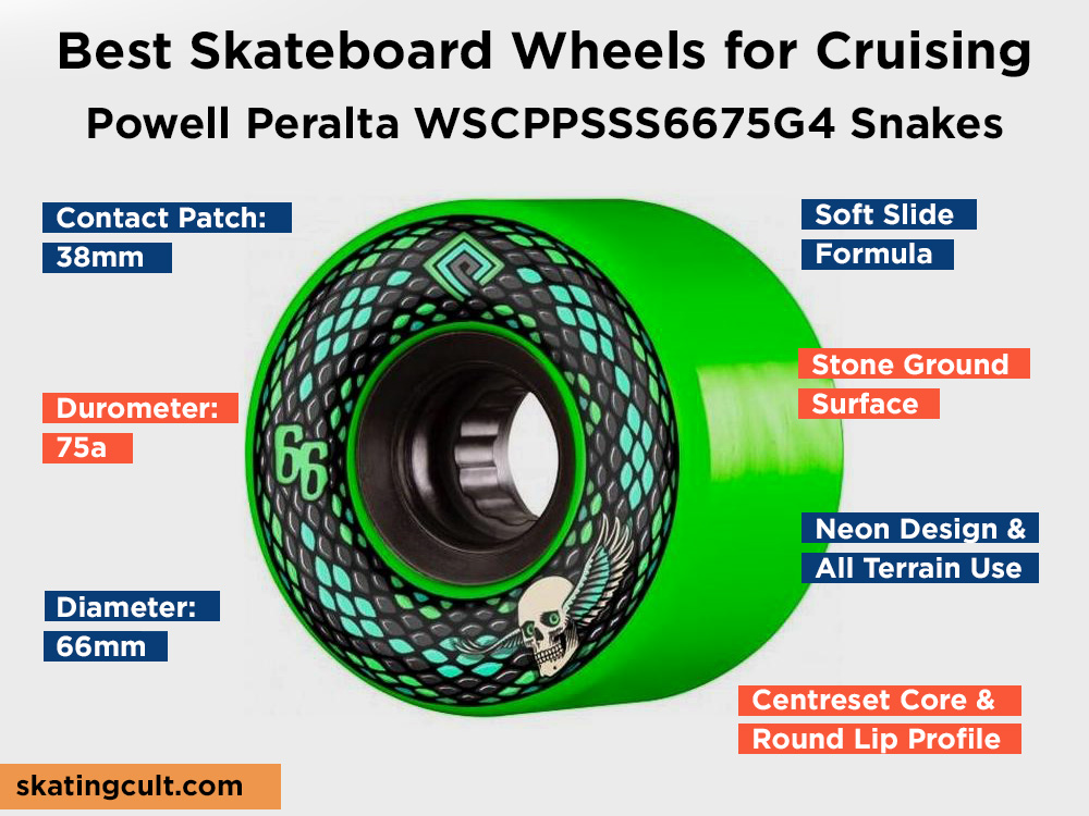 Powell Peralta WSCPPSSS6675G4 Snakes Review, Pros and Cons