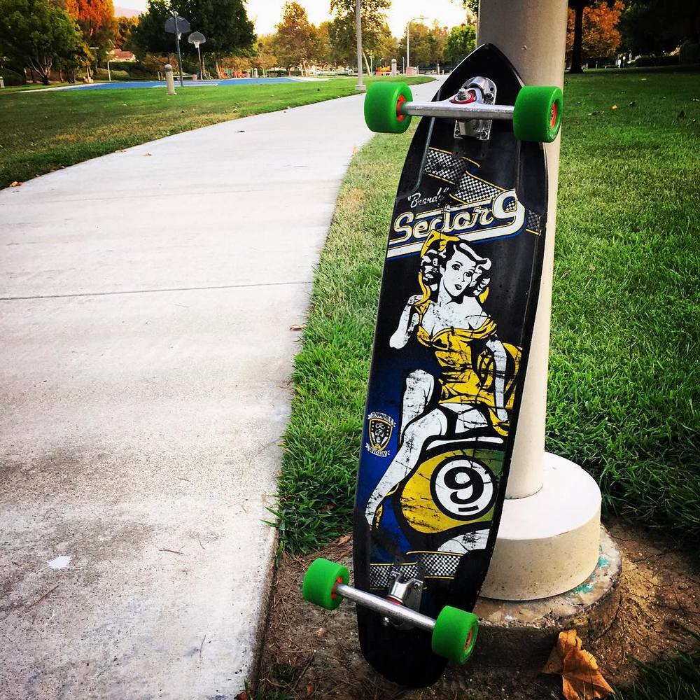 Sector 9 DHS124